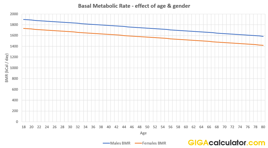 The Graph Above Is Generated Using This Basal Metabolic Rate Calculator And Clearly Shows Difference Between Averages For Males Females